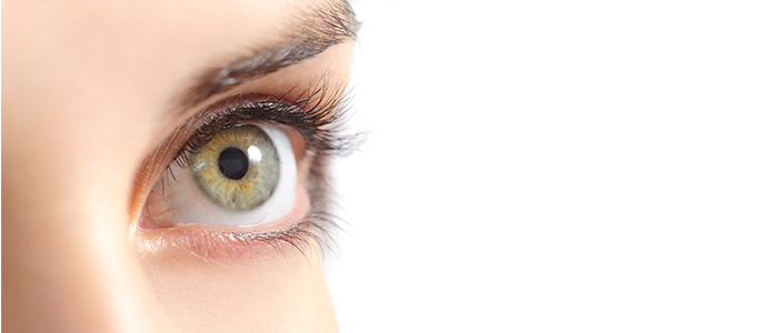 What is Blepharitis?